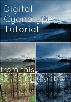 PicMonkey Collage6 Cyanotype Photo Tutorial