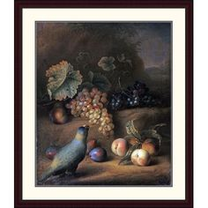 Global Gallery 'A Parrot with Grapes, Peaches and Plums in a Landscape' by Tobias Stranover Framed Painting Print Size:
