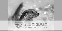 The Blue Ridge Heritage Trail. Visitors can enjoy a single stop or piece together several sites by theme, town, region or activity to create their own personalized trail.