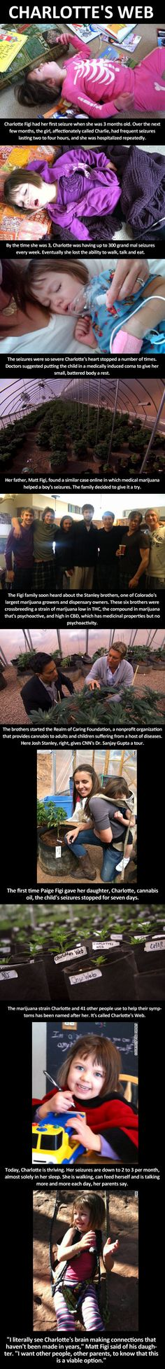 Charlotte's Web. I cannot pin this enough! Marijuana has a place in health care!