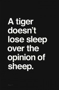 Took the words Great Quotes, Quotes To Live By, Me Quotes, Motivational Quotes, Inspirational Quotes, Sleep Quotes, Tiger Quotes, Post Quotes, Meaningful Quotes