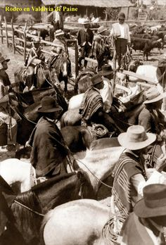 Imágenes de Chile del 1900: Pirque, Maipo, Paine Puerto Natales, San Bernardo, Rodeo, Culture, History, Social Stories, Easter Island, Historia, Bull Riding