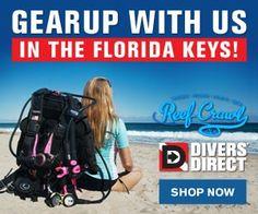 GearUp for Reef Crawl at Divers Direct Vip Card, Kayak Paddle, Florida Keys, Snorkeling, Kayaking, Learning, Key Largo, Studying, Teaching