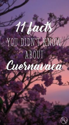 11 facts you didn't know about Cuernavaca, the city of eternal spring. #rollingvibes #keeprolling www.rollingvibes.com