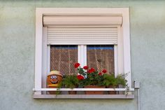 People prefer to have aluminium security shutters for the extra strength and these shutters cannot get affected by harsh climate. Security Shutters, Different Types, Blinds, Home Improvement, Outdoor Structures, Windows, Patio, Outdoor Decor, Kitchens