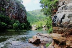 HOEDSPRUIT NATIONAL PARK - See more at http://www.markmetcalfe.co.za/