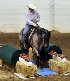 Une jolie combinaison de difficultés ! MOntrer les difficultés séparément puis les combiner est une bonne stratégie pour rendre votre cheval plus courageux.