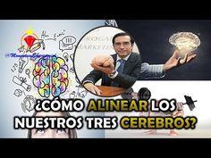 Mario Alonso Puig - ¿Cómo ALINEAR nuestros tres CEREBROS? - YouTube Mario, Alonso, Physics, Youtube, Mental Health, Brain, Life Coaching, Prayers