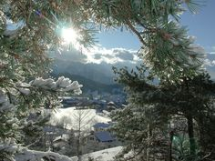 Winter in Tirol/Tyrolean winter Oregon Living, Winter Time, Alps, Winter Wonderland, Places To Go, Germany, Trees, Seasons, Country