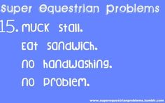 Super Equestrian Problems