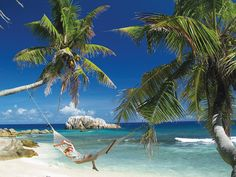 In the island nation of Seychelles, Cousine Island offers luxury villas  ===>