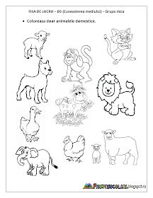 Fise de lucru - gradinita: FISE de lucru cu Animale DOMESTICE Grupa mica, Grupa mijlocie, Grupa mare Preschool Lesson Plans, Kindergarten Worksheets, Alphabet Activities, Preschool Activities, Baby Crafts, Box Art, Pre School, Childhood, Comics