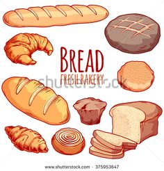 Set of different bakery. Bread loaf bun muffin croissant bagel etc. Croissants, Logo Panaderia, Pudding In A Mug, Banana Pudding Desserts, Bread Art, Zuchinni Recipes, Muffins, Bakery Logo, Food Painting