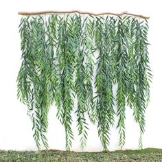 Faux Backdrop Greenery Foliage Branch <br> Faux Backdrop Greenery Foliage Branch is a beautiful decor for your house. Topiary Plants, Ivy Plants, Potted Trees, Foliage Plants, Faux Plants, Plants Indoor, Indoor Gardening, Outdoor Plants, Potted Plants