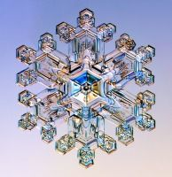 These pictures show real snow crystals that fell to earth in Northern Ontario, Alaska, Vermont, the Michigan Upper Peninsula, and the Sierra Nevada mountains of California.  They were captured by Kenneth G. Libbrecht using a specially designed snowflake photomicroscope.