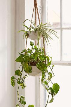 double geometric plant hanger