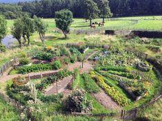 Der Mandala-Garten in Permakultur, Prinzipien und Inspirationen The mandala garden in permaculture,