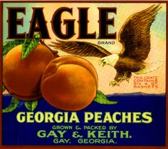Georgia Peach Fruit Crate Label Art Prints
