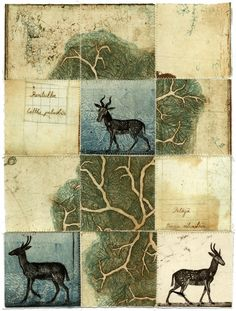 Piia Lehti: Collection No 54, stitched graphic, 2014