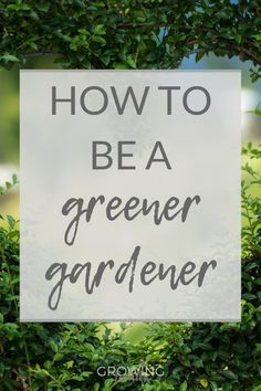 Want to make your garden more eco-friendly? This sustainable gardening guide has lots of easy environmentally friendly gardening tips for greener gardening. Compost Bags, Sustainable Gardening, Organic Gardening, Green Garden, Garden Plants, Gardening For Beginners, Gardening Tips, Garden Tools