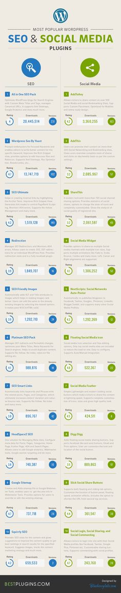 Infographics: Popular WordPress SEO Media Plugins