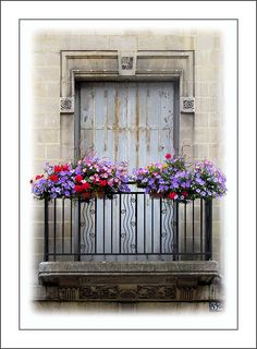 Balcony with metal door softened with flowers, amiens, france
