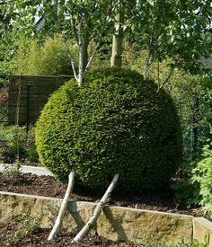 Die Geschickte Nutzung Von Gegensätzen Sorgt In Der Gartengestaltung Für  überraschende Elemente Im Garten.