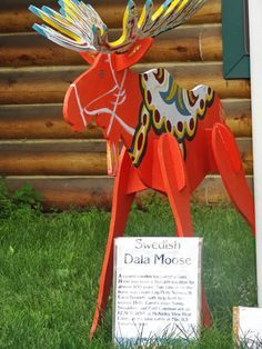 swedish-moose-talkeetna