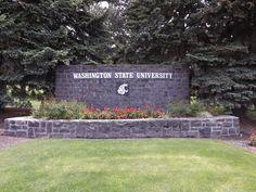 Washington State University sign