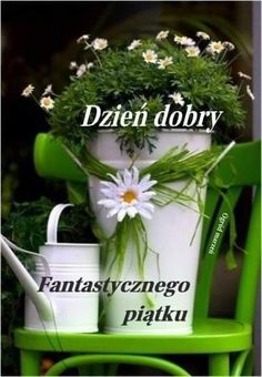 Herbs, Plants, Good Morning Funny, Funny Stuff, Herb, Plant, Planets, Medicinal Plants