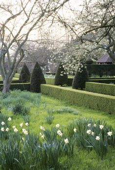 Hinton Ampner Garden, Hampshire. Designed by Ralph Dutton to combine the formal and the informal.