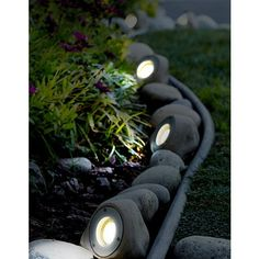 Five Light Rock Led Landscape Kit 2r771 Lamps Plus Landscaping With Rocks Landscape Lighting Kits Landscape Lighting