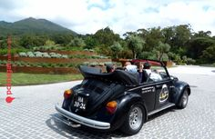 #vintage #car #vw #beetle #sintra #tour