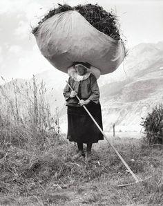 Pepi Merisio, Fienagione a Cogne (Aosta) 1959