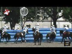 Championnat de Horse Ball à Nancy, Place Carnot