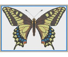 Yellow Swallowtail Butterfly Papilio machaon by HornswoggleStore