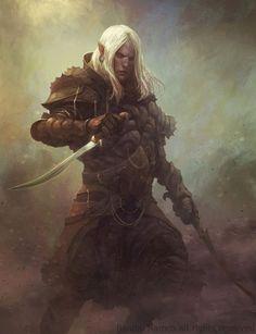 Elf Rogue Warrior White hair