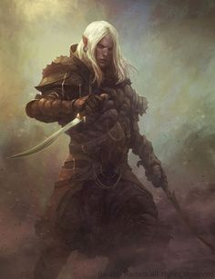Elf Rogue Warrior White hair