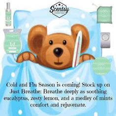 Just breathe Scentsy Scentsy Games, Scentsy Uk, Scented Wax Warmer, Scentsy Independent Consultant, Wax Warmers, Just Breathe, Flu Season, Consultant Business, Cold
