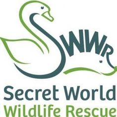 Zoo Jobs: Chief Executive Secret World Wildlife Rescue