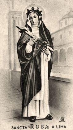 SANTINO HOLY CARD SANTA ROSA DA LIMA n 2