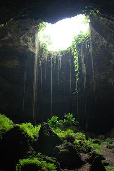 Cave in Punta Cana, Dominican Republic