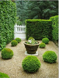 """Photo by Wendy Uvino """"A French Garden"""""""