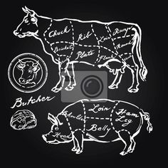 Illustration of pork and beef cuts - hand drawn set vector art, clipart and stock vectors. Carnicerias Ideas, Banner Printing, Vinyl Wall Stickers, Chalkboard Art, Photo Wallpaper, Wall Murals, Wall Art, Vector Art, How To Draw Hands
