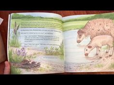 """Review """"Green Grass, Still Waters"""" Psalm 23 by Kelli Carruth Miller Illustrated by Linda Boswell - YouTube Precious Book, Book Reviews For Kids, Psalm 23, The Shepherd, Help Teaching, Green Grass, Wool Yarn, Be Still, Louisiana"""