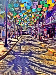 guide to sayulita, mexico - a nutritionist eats