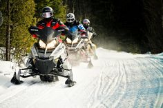 Learn more about the snowmobile trails, the North Shore Loop and Top Secret Boondocking in our region. All About Canada, Outdoor Adventures, North Shore, Forests, Small Towns, Hospitality, Ontario, Trail, Safety