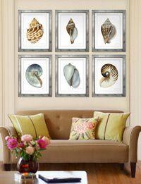 john matthew moore shell prints - Google Search