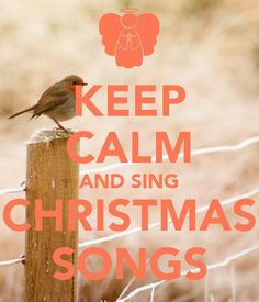 This has been me...24/7 all throughout the house....gotta love those Christmas carols!