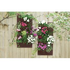 Verti-Plant hanging planter (2 pack)